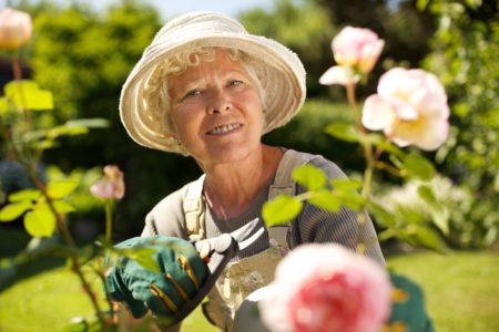 Home Care Services in Pittsburgh PA:Creating A Senior-Friendly Garden Space