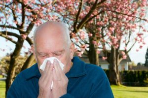 Senior Care in Sewickley PA: Allergy Season